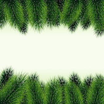 Fundo de galhos de árvore de natal