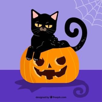 Fundo de gato preto em cima de uma abóbora