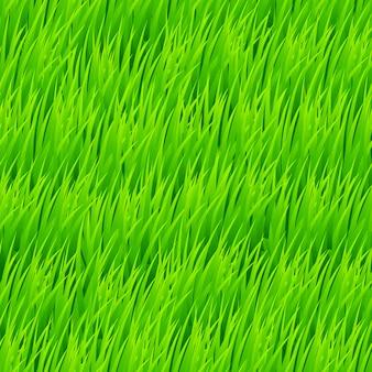 Fundo de grama fresca