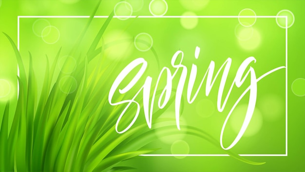 Fundo de grama verde frash spring com letras manuscritas. ilustração Vetor Premium