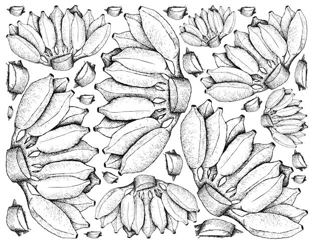 Fundo de ilustração de frutas frescas de esboço desenhado à mão
