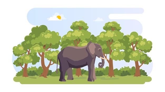 Fundo de ilustração do dia internacional da floresta