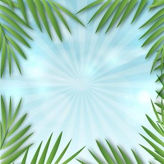 Fundo de luz do sol com folhas de palmeira