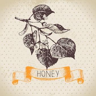 Fundo de mel com ilustração de esboço desenhado à mão