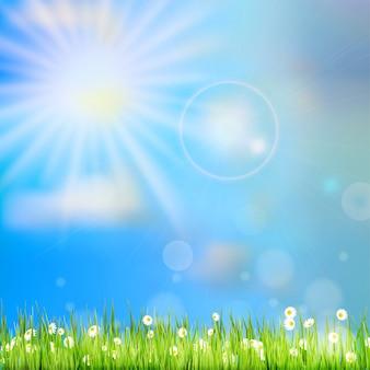 Fundo de natureza abstrata primavera ou verão.