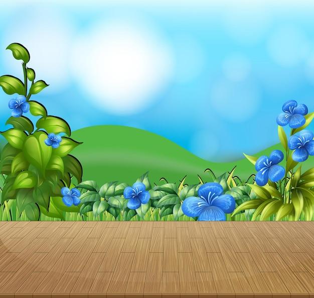 Fundo de natureza com campo de flores e grama verde