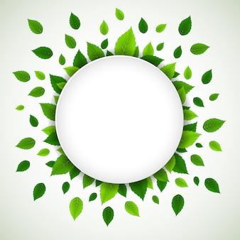 Fundo de natureza com folhas verdes