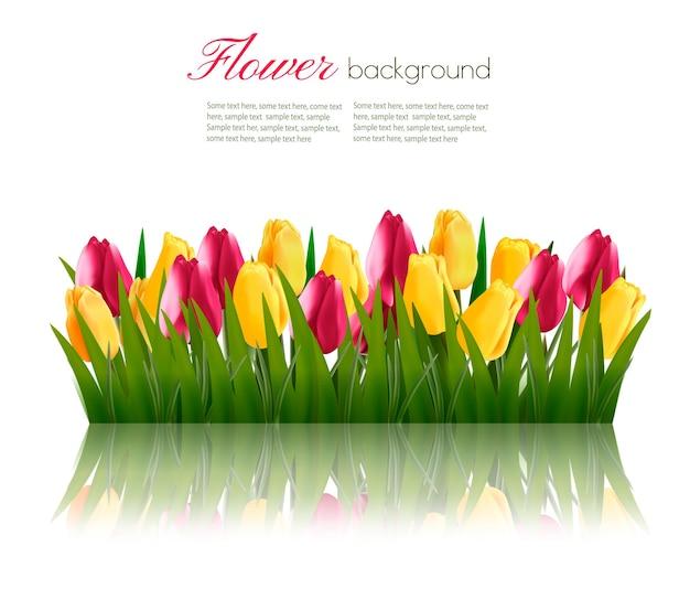 Fundo de natureza com grama verde e flores coloridas. Vetor Premium