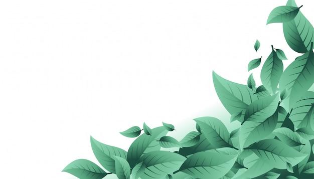 Fundo de natureza com muitas folhas e copyspace