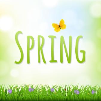 Fundo de natureza de primavera com borda de grama e flores com ilustração de malha gradiente