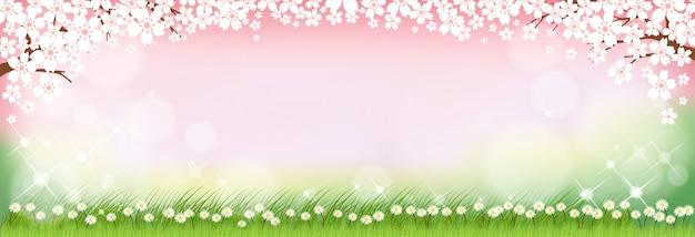 Fundo de natureza verão com margarida fofo flores e campos de grama verde.