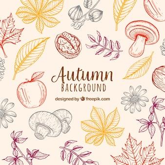 Fundo de outono com a natureza