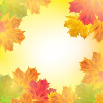 Fundo de outono com folhas folhas de bordo realista com luz do sol para anúncio de banner de cartaz