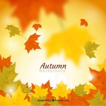 Fundo de outono com folhas realistas