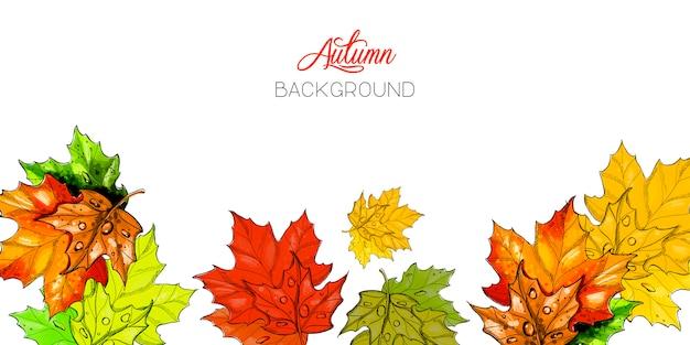 Fundo de outono com folhas.