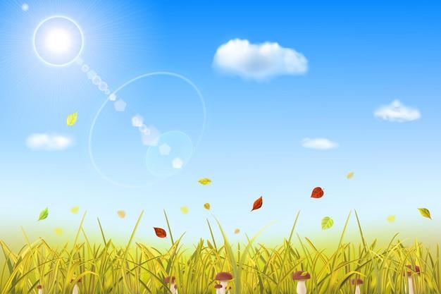 Fundo de outono com grama amarela, cogumelos, folhas, céu, sol e nuvens
