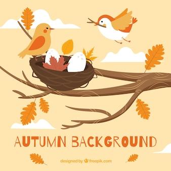 Fundo de outono com pássaros