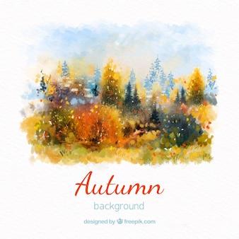 Fundo de outono em aquarela com floresta