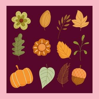Fundo de outono flores de abóbora ícones de ramos de bolota