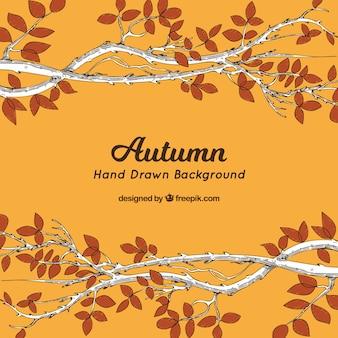 Fundo de outono mão desenhada
