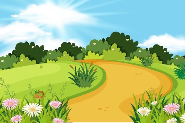 Fundo, de, paisagem, com, estrada, parque