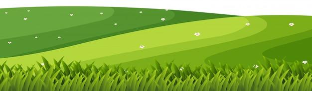 Fundo de paisagem com grama verde nas colinas