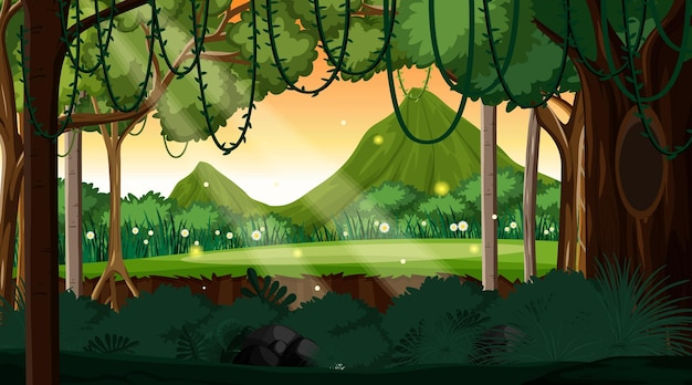Fundo de paisagem de floresta natural