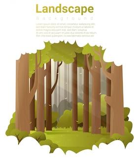 Fundo de paisagem de floresta
