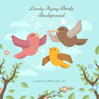 Fundo de pássaro voador plano
