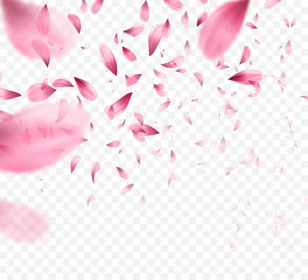 Fundo de pétalas caindo rosa sakura.