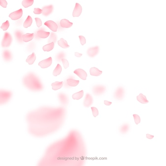 Fundo de pétalas de flor de cerejeira em estilo degradado
