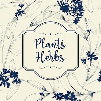Fundo de plantas e ervas. elemento para cartão de design ou convite