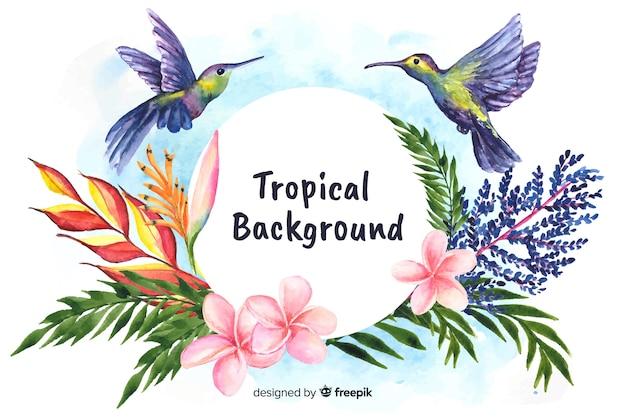 Fundo de plantas e pássaros tropicais em aquarela
