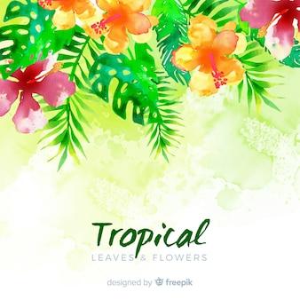Fundo de plantas tropicais em aquarela