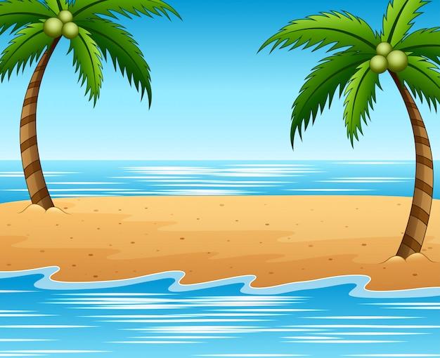 Fundo de praia e coqueiros de verão