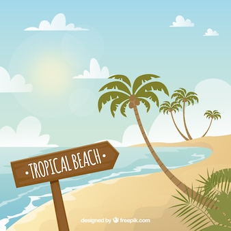 Fundo de praia tropical com palmeiras