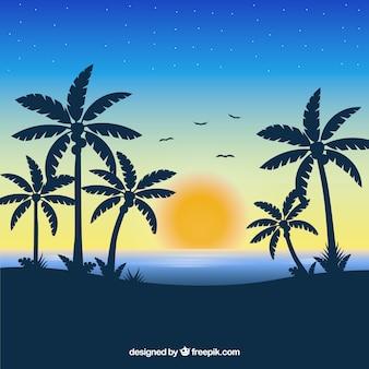 Fundo de praia tropical com pôr do sol