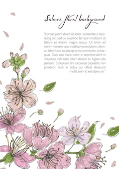 Fundo de primavera com flores desabrochando sakura. modelo com lugar para texto.