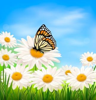 Fundo de primavera com flores e borboletas
