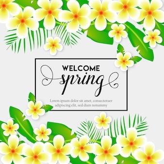 Fundo de primavera com flores e folhas de lilly
