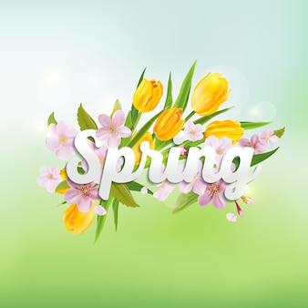 Fundo de primavera com tulipas e flores de cerejeira