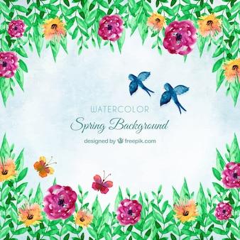 Fundo de primavera de aguarela com pássaros