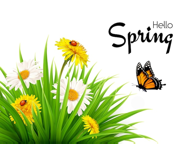 Fundo de primavera de natureza com grama, flores e borboletas.