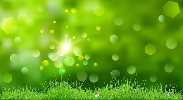 Fundo de primavera em cores verdes com céu, sol, grama e flores