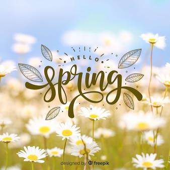 Fundo de primavera olá fotográfico