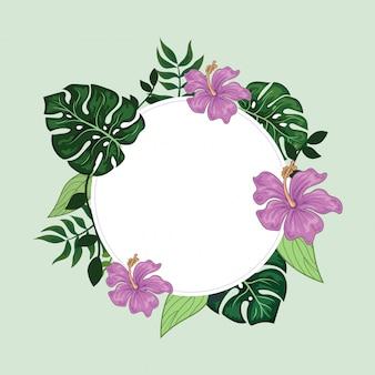 Fundo de quadro redondo de borda floral tropical