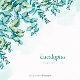 Fundo de ramo de eucalipto de mão desenhada