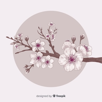 Fundo de ramo de flor de cerejeira de mão desenhada