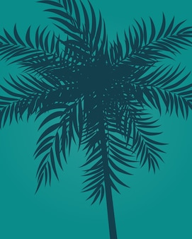 Fundo de silhueta de folha de palmeira linda