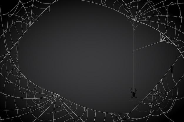 Fundo de teia de aranha de halloween